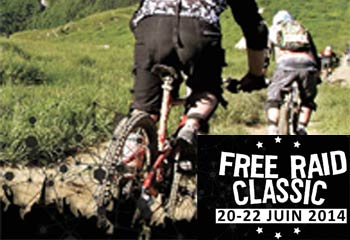Free Raid Classic 2014